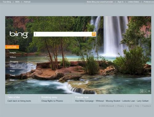 MSN (Bing) 2009