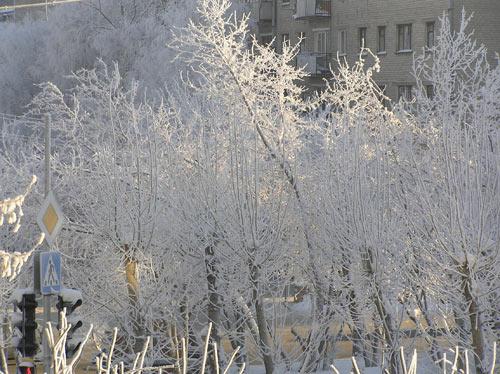 Морозное утро в Тюмени