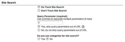 Отслеживание внутрисайтовых поисковых запросов