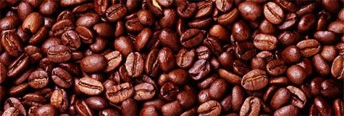 Кофеин от Google: как он повлиял на SEO и интернет маркетинг в целом?